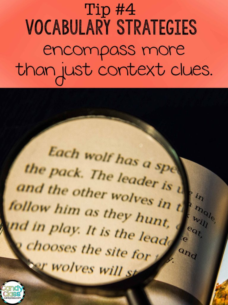 Vocabulary Strategies encompass more than just context clues