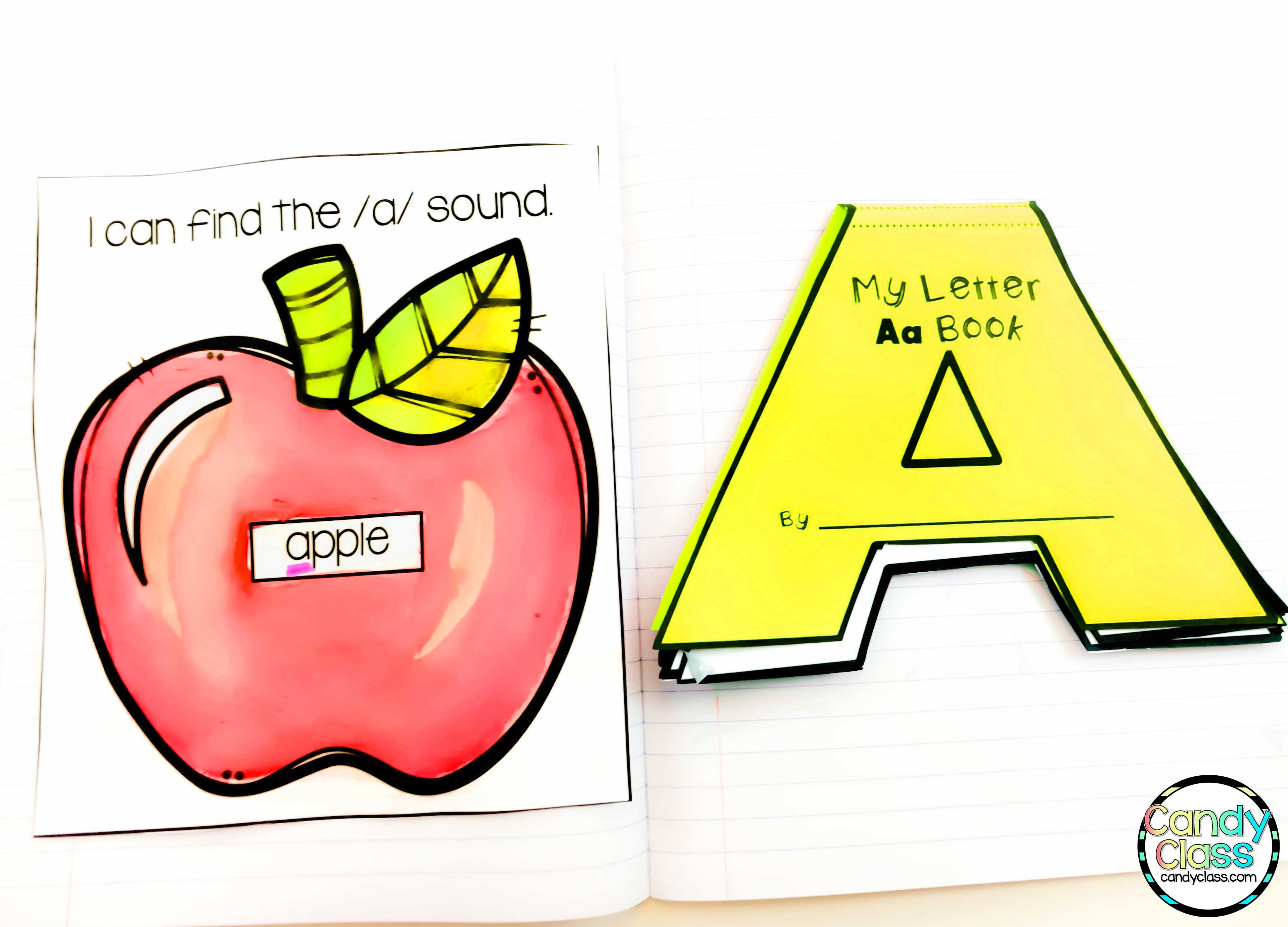 Sample of Alphabet Interactive Notebook Page