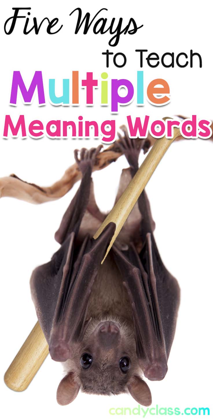 Teaching Multiple Meaning Words or Homophones